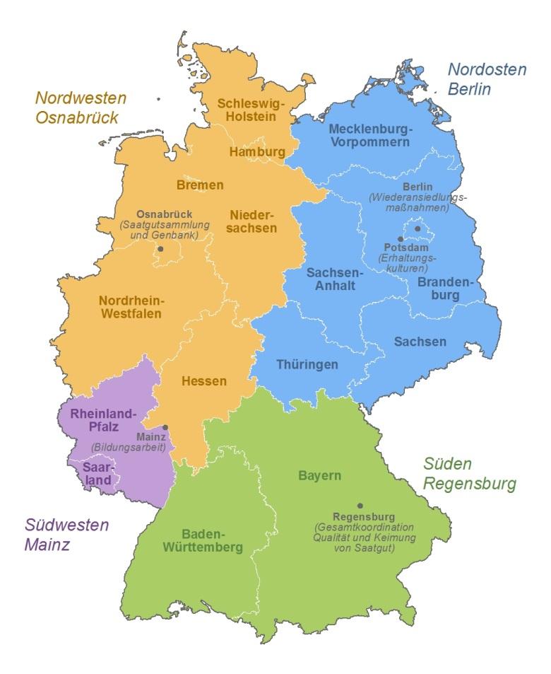 Auf diesem Bild ist das Projekt Wildpflanzenschutz Deutschland mit seinen Verbundpartnern und ihren jeweiligen Projektregionen auf einer Deutschlandkarte dargestellt. Der Nordwesten als Projektregion von Osnabrück, der Nordosten von Berlin, der Süden von Regensburg und der Südwesten von Mainz. Darüber hinaus ist Mainz für die Pädagogik und Karlsruhe für die Öffentlichkeitsarbeit zuständig.